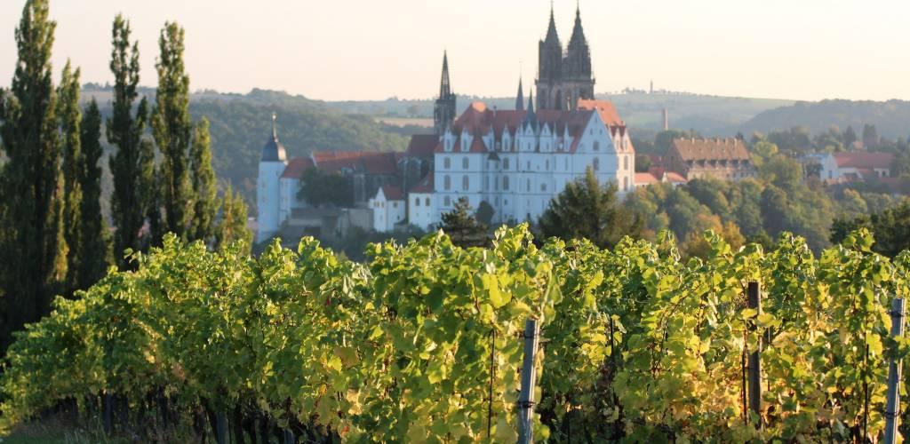 Moderne Agrartechnik trifft auf historische Kulisse: Von den Rebstöcken des Weinguts blickt man hinab auf die Elbe die Porzellanstadt Meißen. © Weingut Schloss Proschwitz Prinz zur Lippe